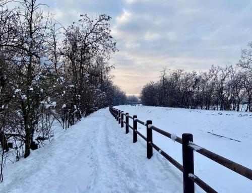 Lainate nevicata del 28 dicembre 2020